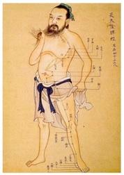 AcupunctureMeridians